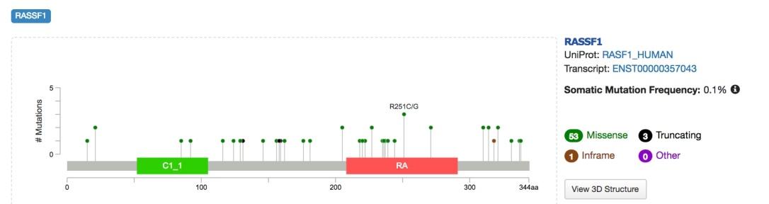RASSF1_Mutations
